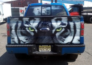Tailgate wrap