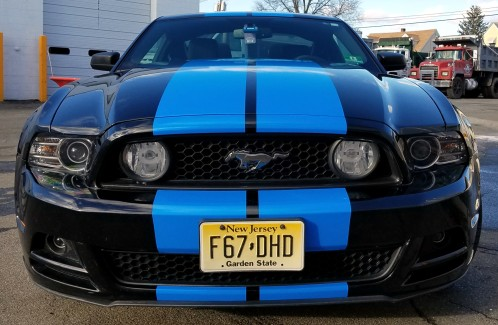 Mustang blue racing stripes one