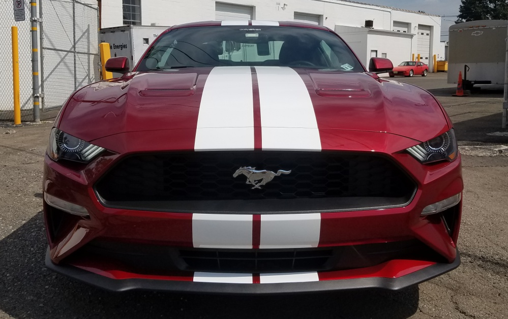 Ford Mustang white racing striped