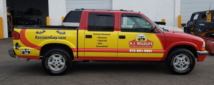 NJ Wildlife control partial wrap